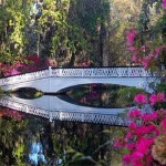 Bridge at Magnolia Plantation Gardens