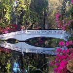 Bridge at Magnolia Plantation Gardens